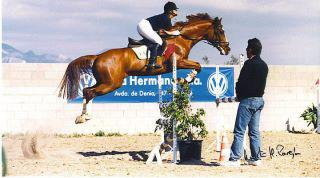 George in his showjumping days