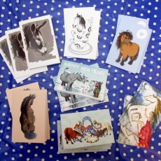 Illustrated equine greeting cards (12 pack)