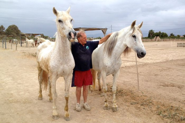 Easy Horse Care Rescue Centre co-founder Rod Weeding with two rescued horses.